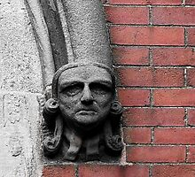 Stone-Faced © by Ethna Gillespie