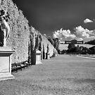 Great Parterre, Gardens of Schönbrunn, Vienna by Rodney Johnson