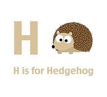 H is for Hedgehog by Eggtooth