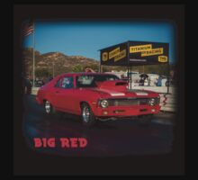 Big Red #2 by don thomas