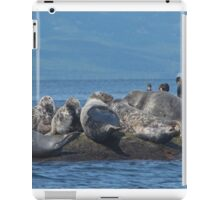 Grey Seals and Cormorants Off the Cabot Trail iPad Case/Skin