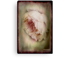 Faded beauty Canvas Print