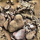 A Heart in Stone by Larry Lingard-Davis