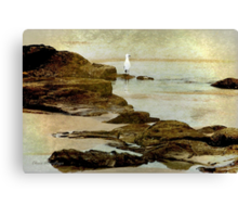 Edge of flight ... Canvas Print