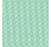Chain Link on Mint Photographic Print