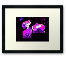 Orchid Flower Trio Framed Print
