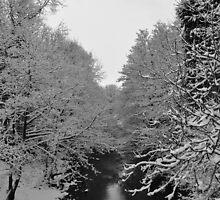 Snowy River by Craftibug