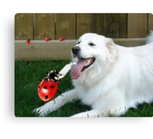 OH...LADYBUG ...THATS A COOL DRINK OF WATER...(CANINE-LADYBUG) - PICTURE & CARD & PILLOW -TOTE BAG Canvas Print