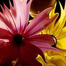 Floral Mindscape by Wayne King