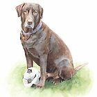 The ball popped! chocolate lab watercolor by Mike Theuer