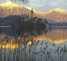 Church on island at Lake Bled Slovenia by John Keates