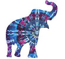 Tie Dye Elephant by mreedd