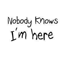 NOBODY KNOWS I'M HERE by James Chetwald Mattson