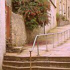 Steps in Stromness by lezvee