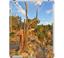 """Old Man Tree"" iPad Case/Skin"