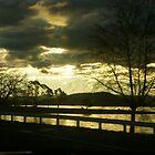Sunset at the lake by hulkingrach