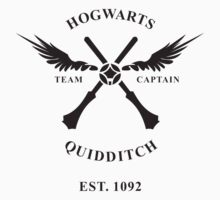 HOGWARTS QUIDDITCH TSHIRT HARRY POTTER T SHIRT TOP TEE WIZRADS TEAM SNITCH GAME by coolandfresh