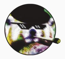 420 Red Panda it by nurb