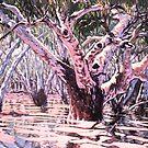 The Drowning Gumtree by Michael Jones