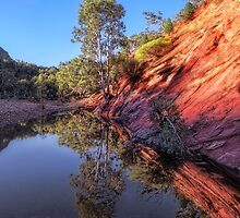 Brachina Creek Waterhole by Mike Arnott