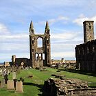 St Andrews' Cathedral - another angle by biddumy