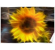 SHINY SUNFLOWER Poster