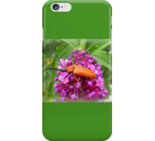Cardinal Beetle on Buddleia iPhone Case/Skin