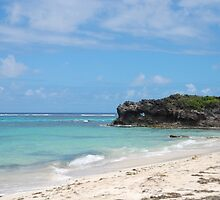 Anse Grosse Roche - Martinique, F.W.I. by Olivia Son