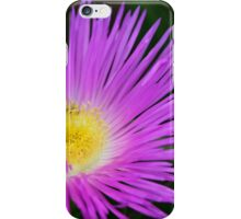 Ice Ice Baby - Flower Photography By Sharon Cummings iPhone Case/Skin