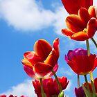 Vibrant Spring by Lindie