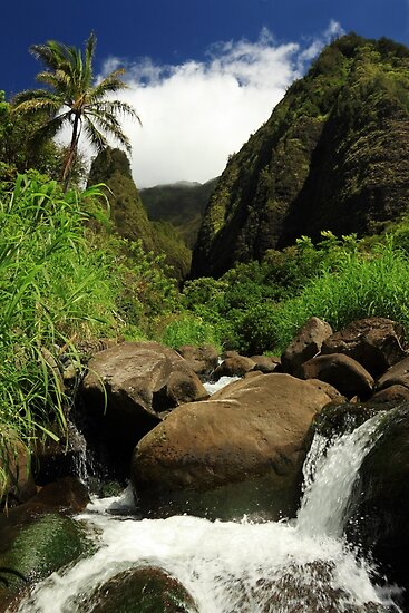 Waterfall At The Iao Needle by James Eddy