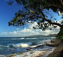 The Beach At Kapaa by James Eddy