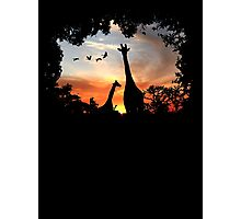 Wild African Sunset Photographic Print