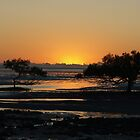 Sunrise , Clairview North Queensland , by Virginia  McGowan