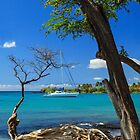 A Sailboat In Anaehoomalu Bay by James Eddy