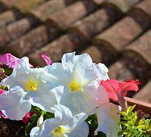 Flowers by Ferrum