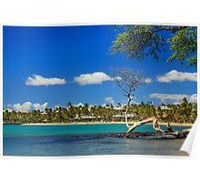 Anaehoomalu Bay Poster