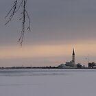 Across the Ice by welchko