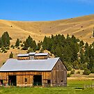 Granite County, Montana, Barn by Bryan D. Spellman