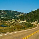 Montana Highway 1--The Pintlar Scenic Byway by Bryan D. Spellman