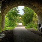 """Old Railway Tunnel, Monsal Dale"" by Bradley Shawn  Rabon"