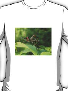 Arilus cristatus T-Shirt