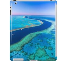 Going with the Flow iPad Case/Skin