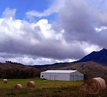 Countryside Tasmania by Michael Crameri
