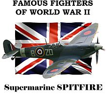 Famous Fighters - Supermarine Spitfire by Mil Merchant