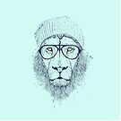 Cool lion by soltib