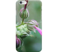 Geranium - 2011 iPhone Case/Skin