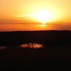 Sunrise at Bishop's Head  by Hope Ledebur