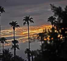 SUNRISE OVER PALM DESERT by JAYMILO
