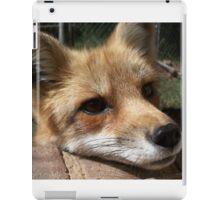 Rusty the Red Fox iPad Case/Skin
